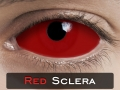 RED SCLERA 22mm - Crazy & Fun Halloween